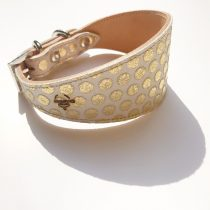 Arany pöttyös agár nyakörv, Greyhound collar with gold dotts