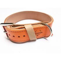Autumn collection orange, wide leather collar