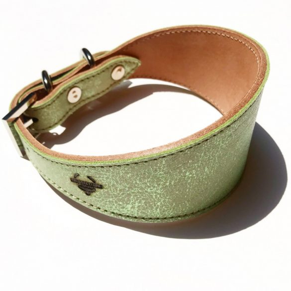 Green greyhound collar