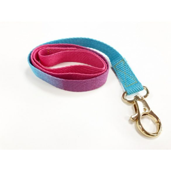 Turquoise-pink ombre leash