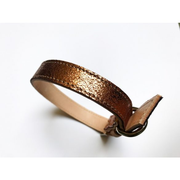 Spring collection-bronze strait leather collar